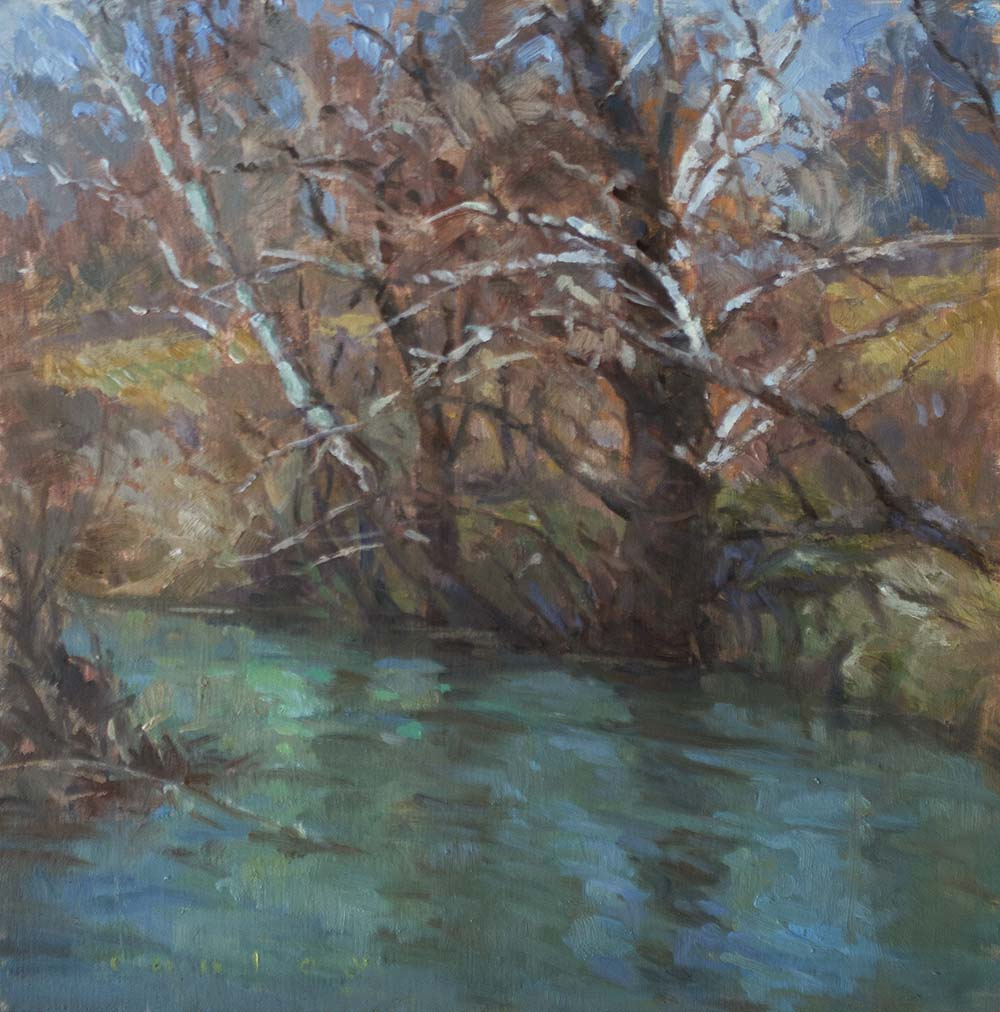 creek with sycamores